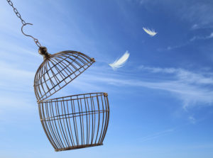 Empty birdcage against a clear, blue sky. Two white feathers float in the bird's wake.